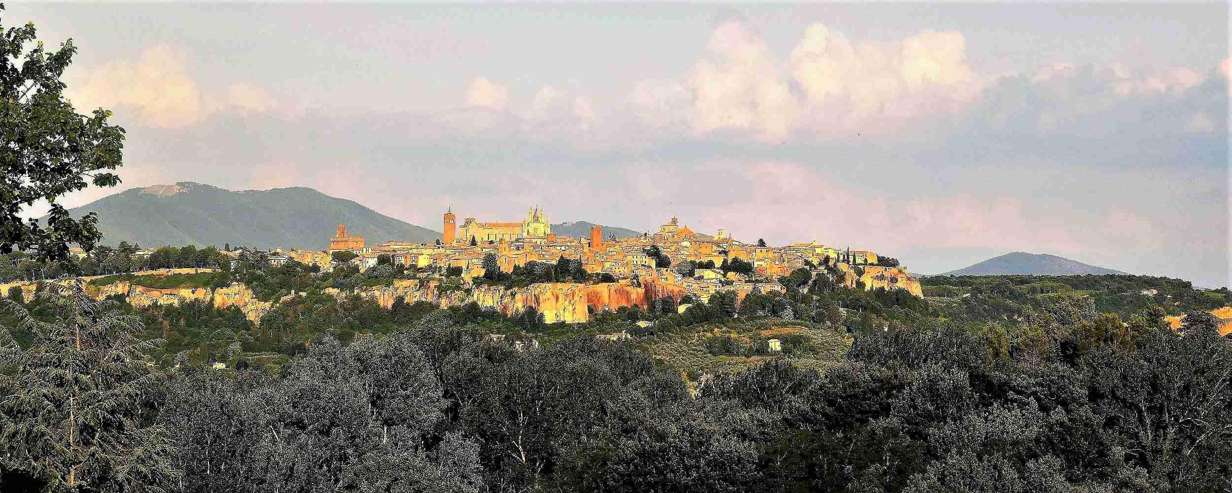 Visita guidata ad Orvieto da Roma con degustazione vini